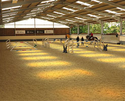 Breen Equestrian (Hickstead)