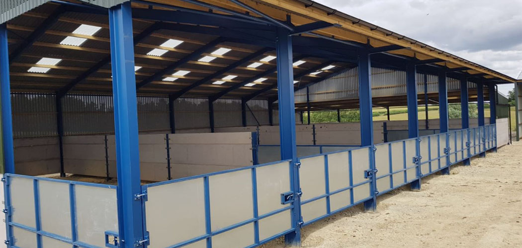 Livestock Shed with Lean To